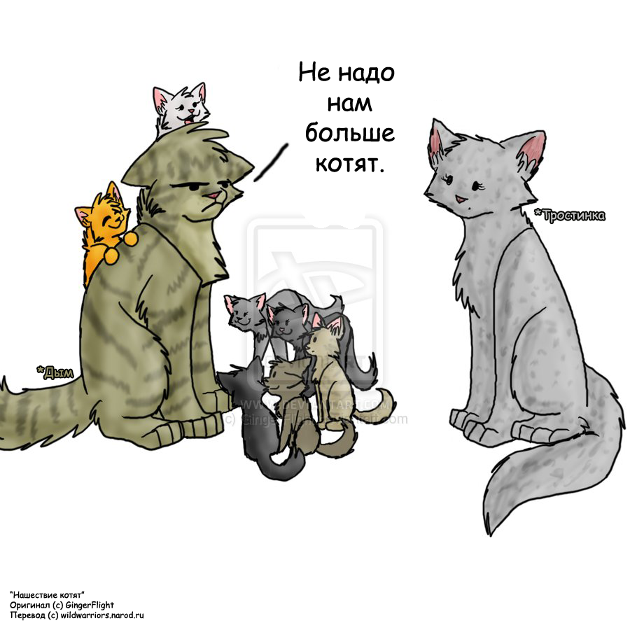 Обои на телефон с котами воителями