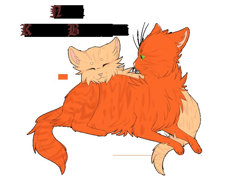 Фанфики коты воители ежевика