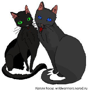 http://wildwarriors.narod.ru/articles/couples/crow_night.jpg