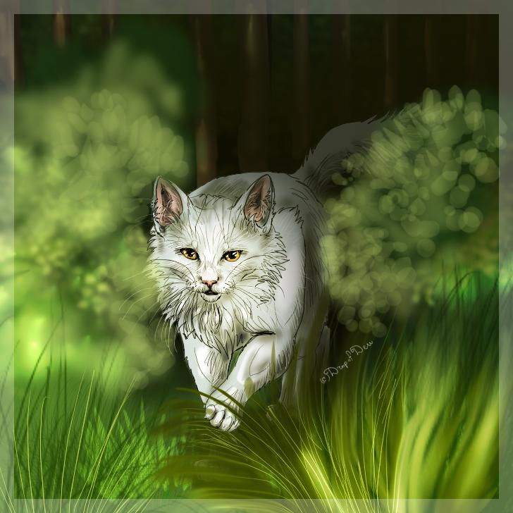Коты воители предводители