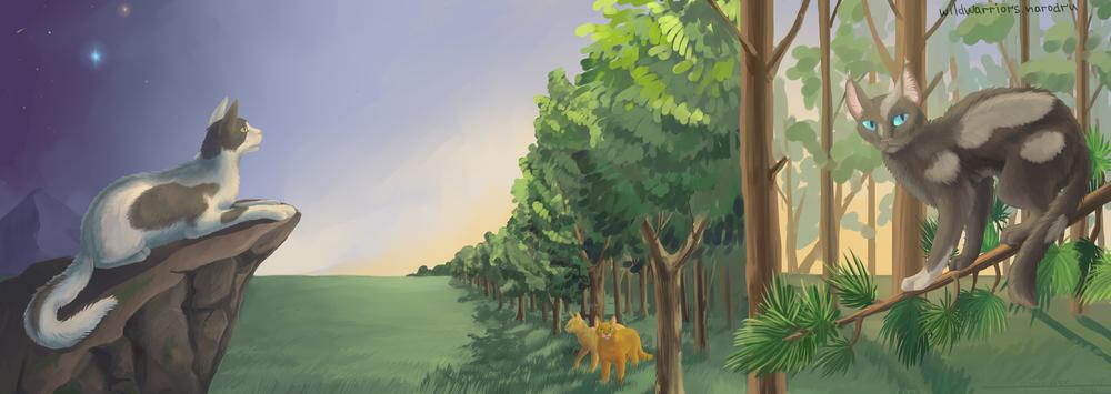котов воителей грозовое племя