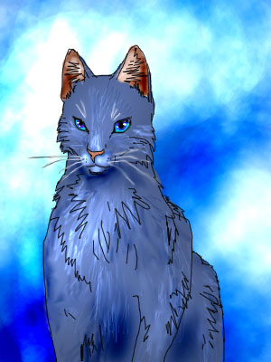 синяя звезда коты воители картинки