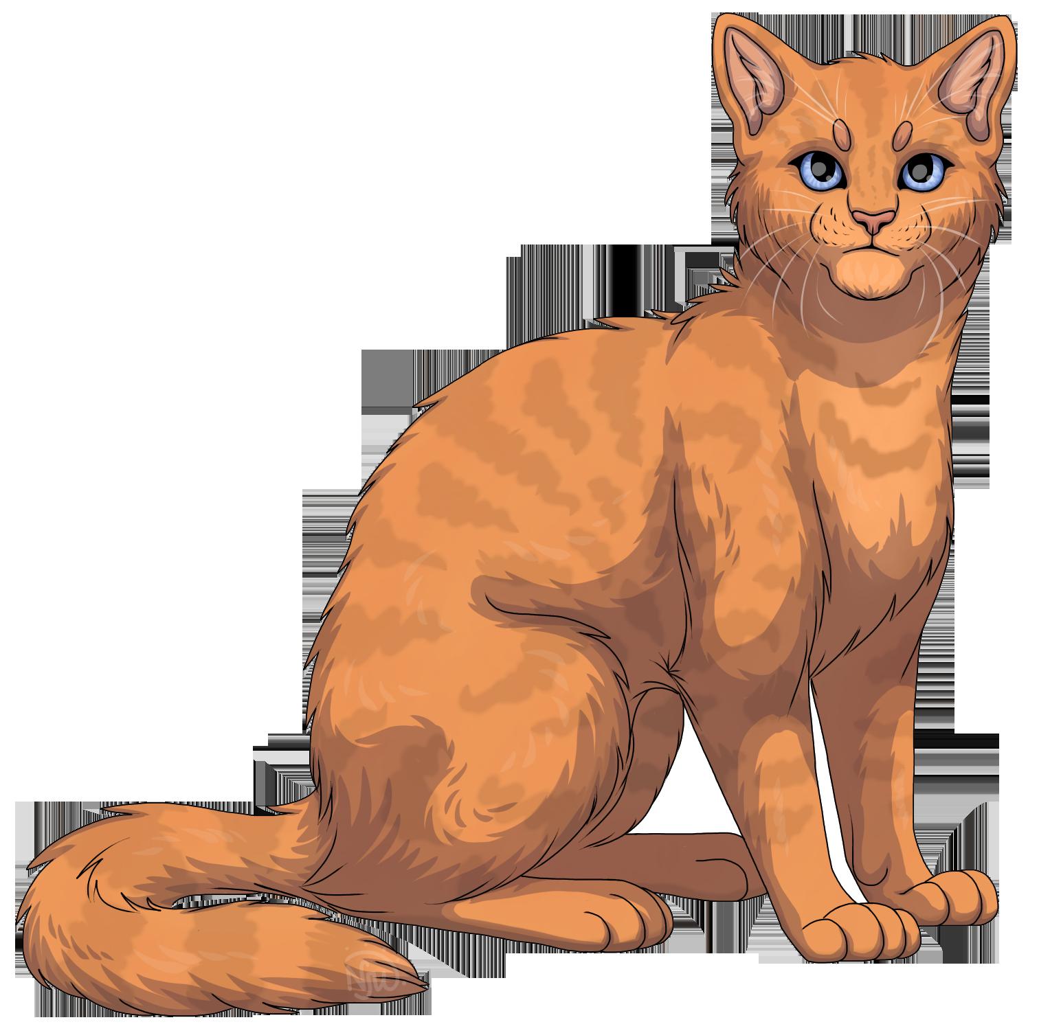 Однозвёзд коты воители