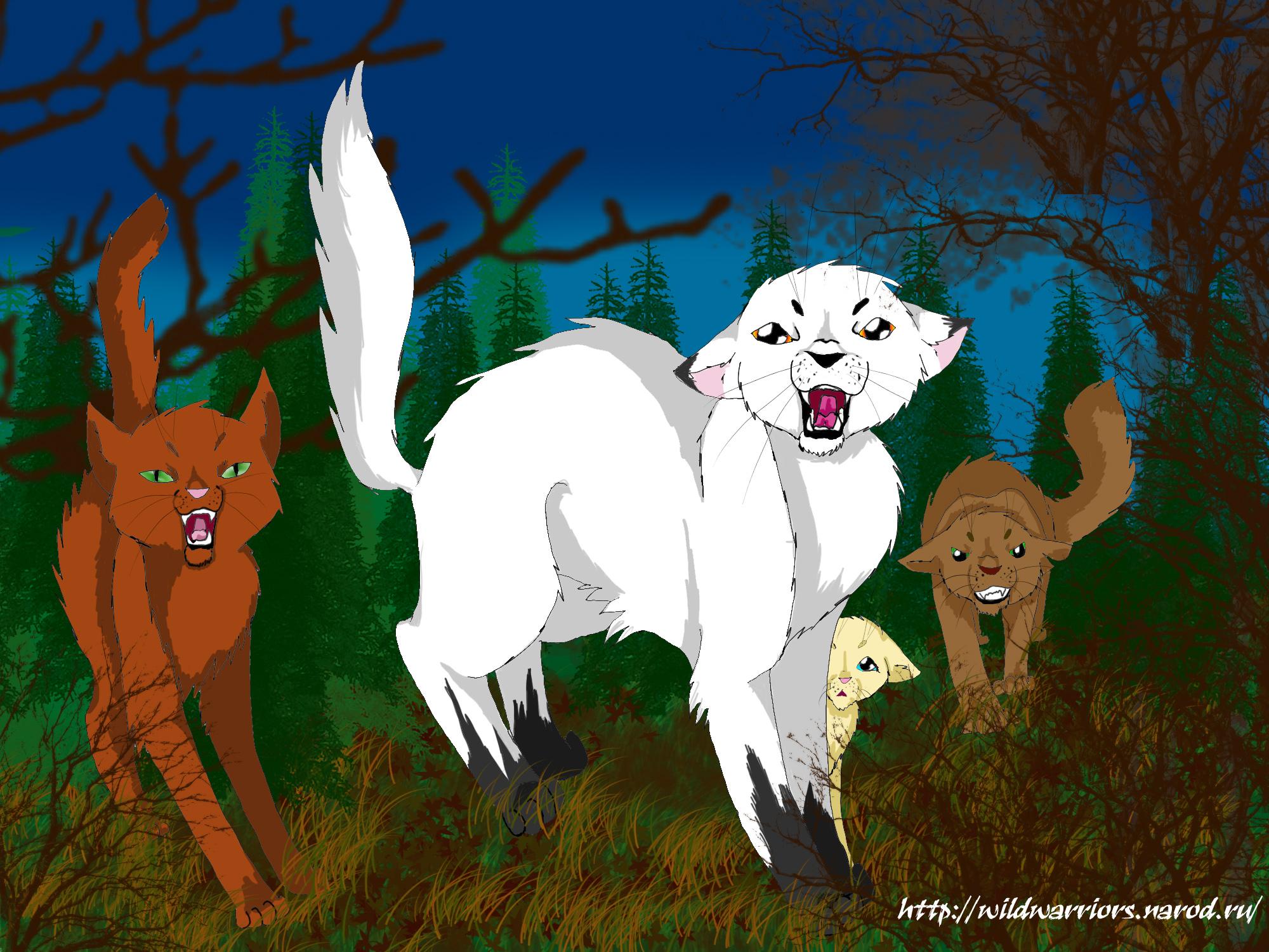 Имена целителей коты воители