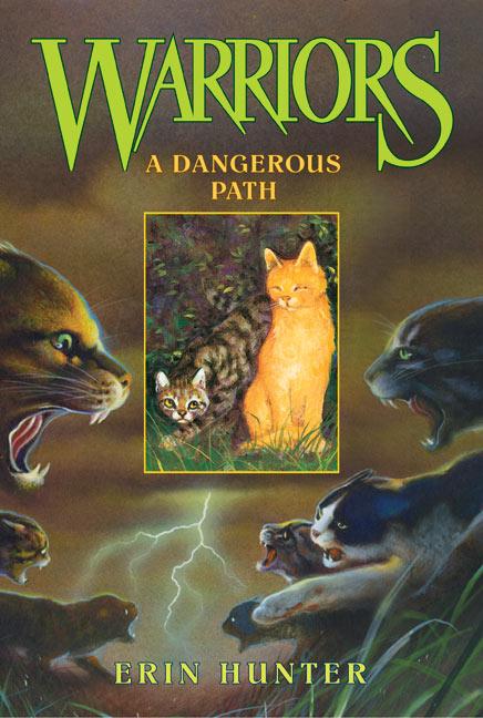 http://wildwarriors.narod.ru/covers/en_a_dangerous_path.jpg
