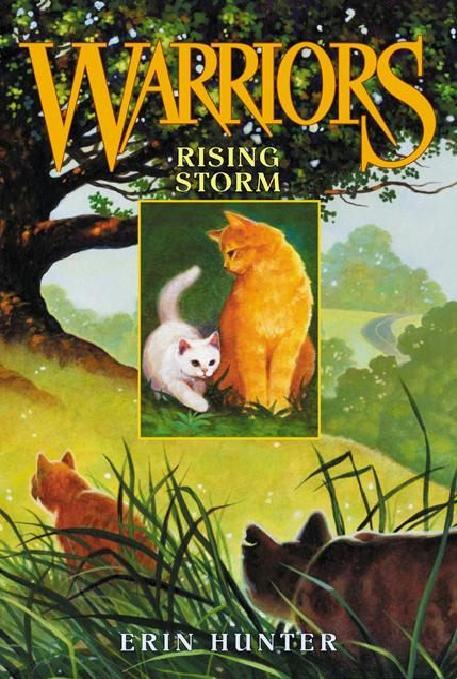 http://wildwarriors.narod.ru/covers/en_rising_storm.jpg