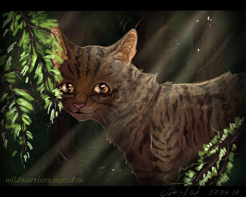 На кого из котов воителей ты похож