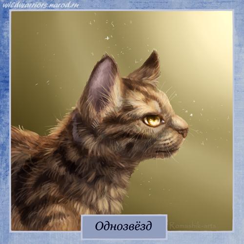 Коты воители однозвезд