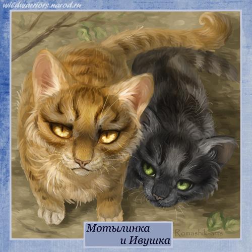 Криволапа коты воители