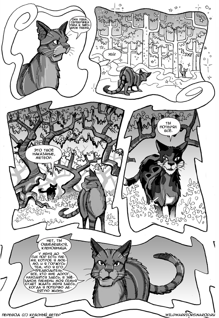 Книга котов воителей обещание метеора