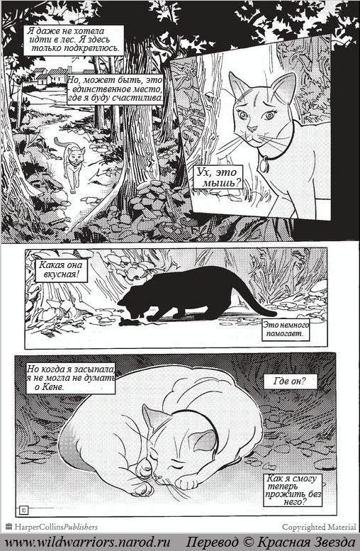 Книги манга скачать коты воители