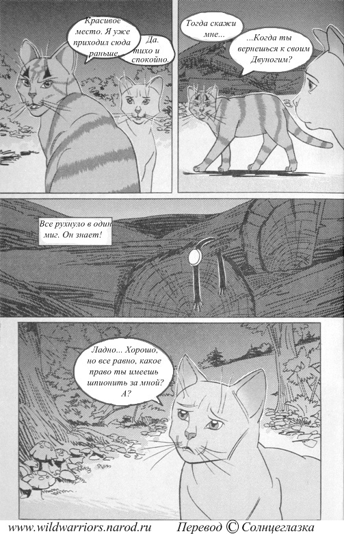http://wildwarriors.narod.ru/manga/intothewoods/translated/39.jpg