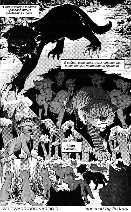 «Коты Воители 1 Сезон Серия 9» — 1996